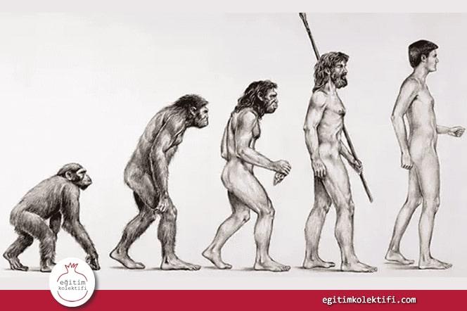 çocuklarımıza evrimi nasıl anlatalım